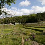 Yoshikazu Kawaguchi's Open Farm School in Nara, Japan (Photo: P.M. Lydon | Final Straw)