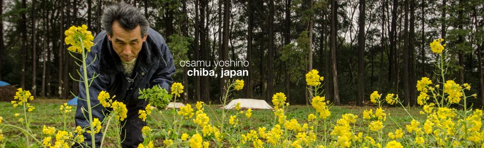 Final Straw Documentary - Osamu Yoshino, Chiba, Japan