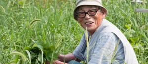 Kita Osamu at his natural farm in Tokushima, Japan