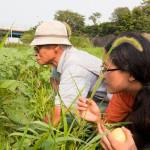 Heeyoung with Kita Osamu at his natural farm in Tokushima, Japan