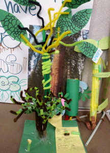 A plant model made by Patrice Milillo's 5th Grade class at Orchard School