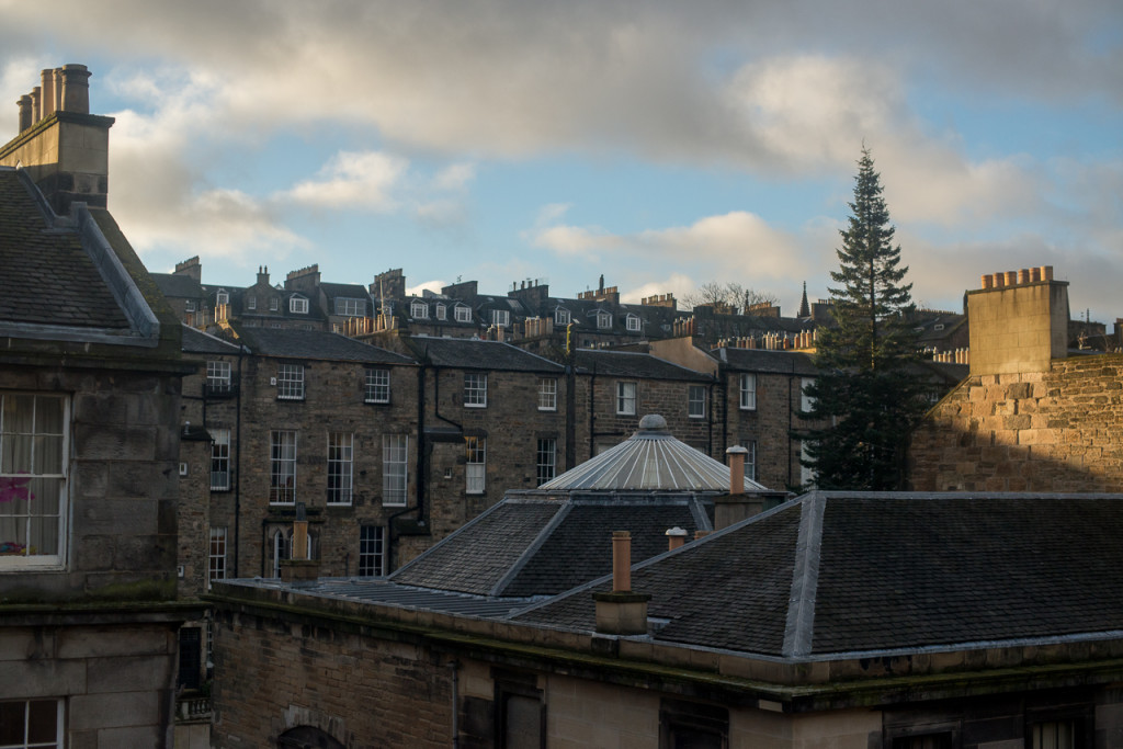 Nature in Edinburgh's New Town, where even a lone tree can be a rarity. (photo: FinalStraw.org | CC BY-SA)