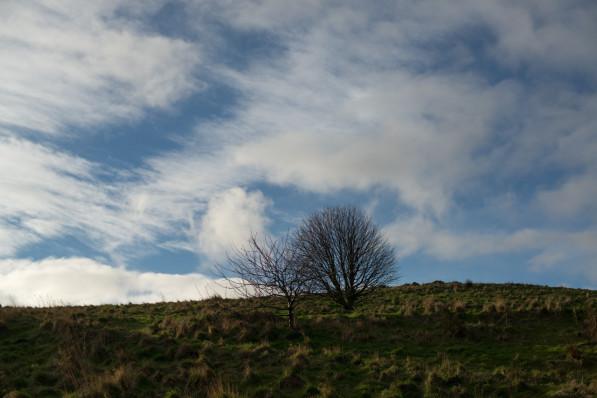 Holyrood Park in Edinburgh (P.M. Lydon, FinalStraw.org | CC BY-SA)