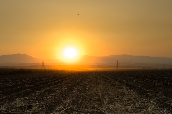 A Fall sunset in California's Central Valley (photo: P.M. Lydon, Final Straw)