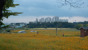 Suwon Citizen's Farm