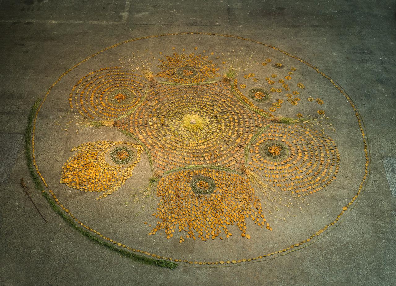 Parts of a whole building a nature mandala - Mandala nature ...